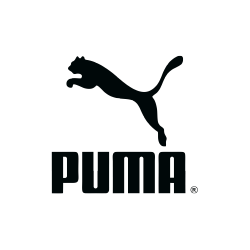 Puma case study